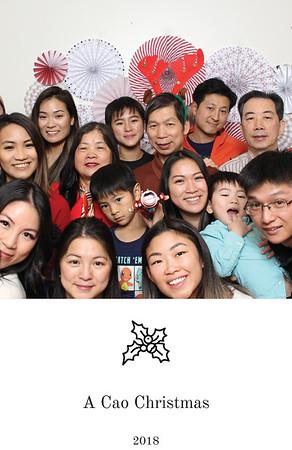 18-12.25-Cao's Christmas