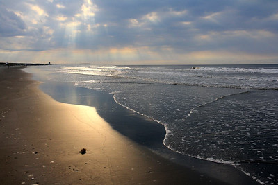 Bird Island --a walk on the beach June 21 2012