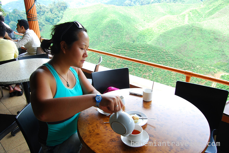 Juno pouring tea.jpg