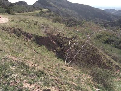 Mustard Dirt Road Repairs - Limestone Park