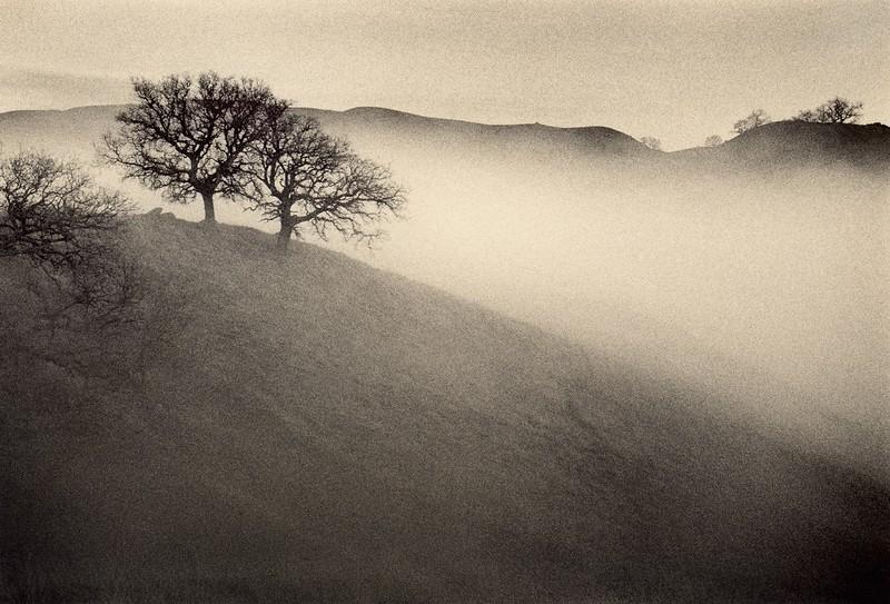 Approaching Fog, Sunol, California