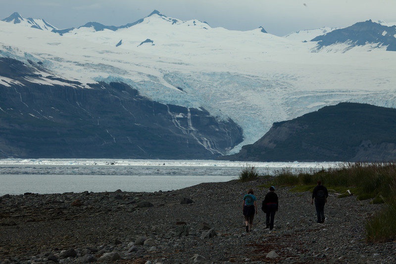Alaska Icy Bay-4051.jpg