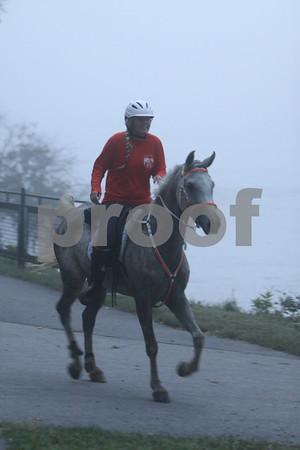 AERC NATIONALS-50-Foggy Morn-2012