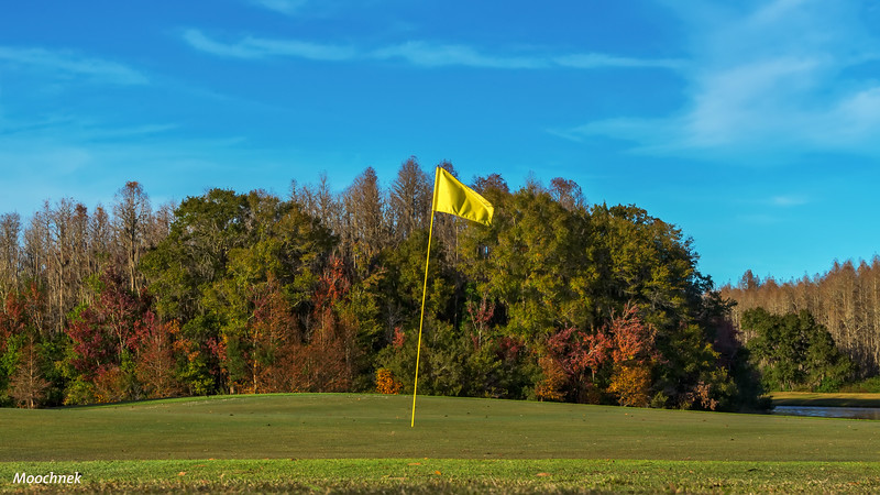 The 9th at Cheval GC
