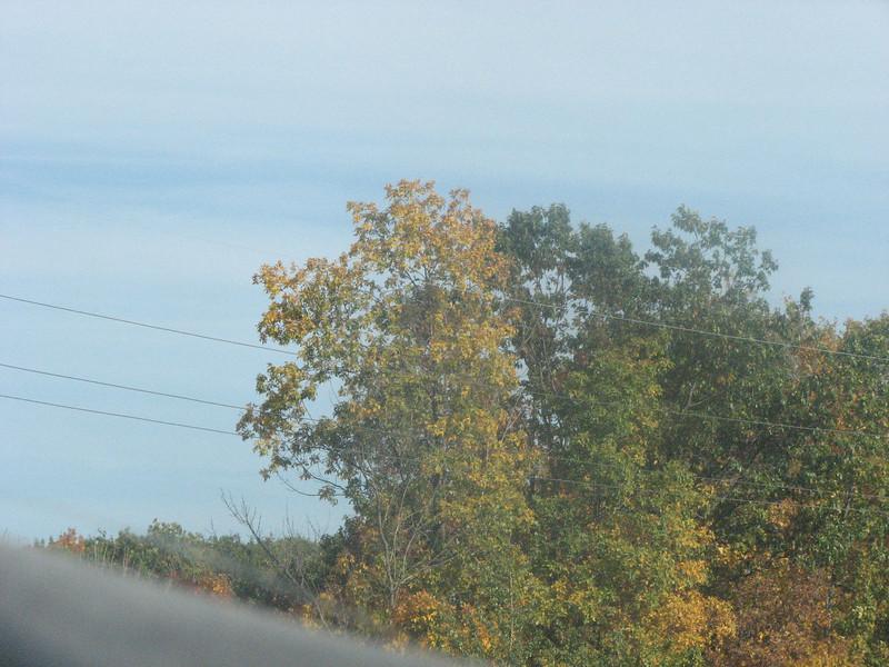 Fall pics 2008 058.jpg