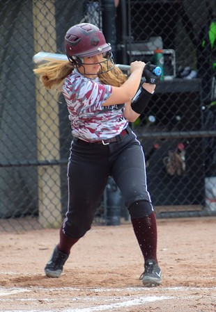 HS Sports - Southgate Anderson at Edsel Ford Softball 19