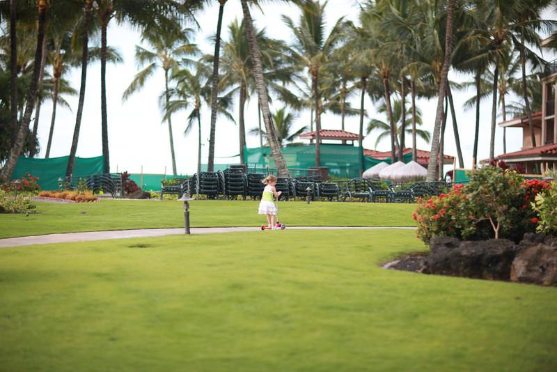 Kauai_D4_AM 015.jpg