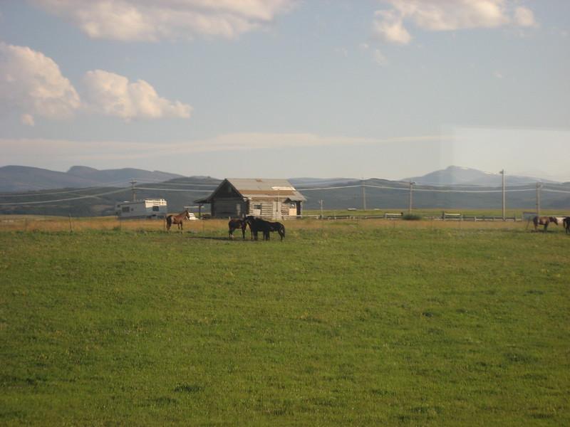 2008-07-24-YOCAMA-Montana_2264.jpg