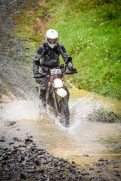 2018 KTM New Zealand Adventure Rallye - Northland (342).jpg