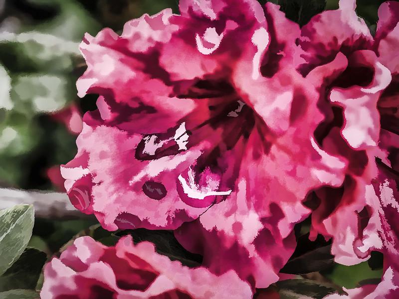 October 14 - Flower.jpg