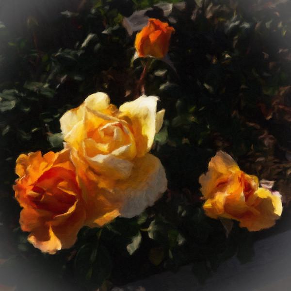 June 8 - Floral adolescensce.jpg