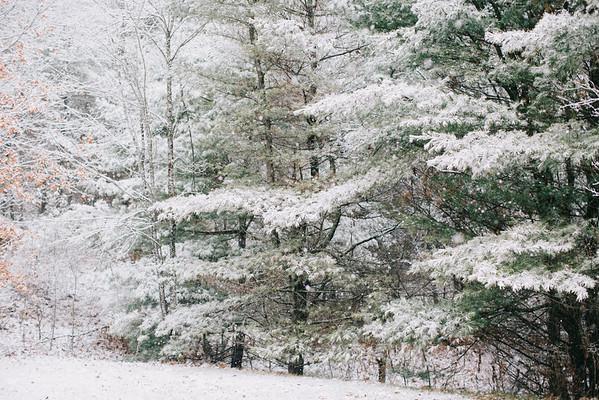 First Snow 11-21-16