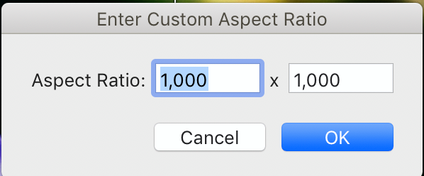 Enter Custom Aspect Ratio Pop Up Window  The Crop Overlay Tool's Aspect Ratio settings explained
