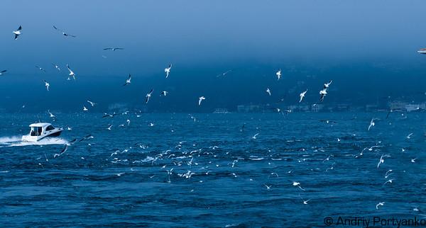 IstanbulSea.jpg