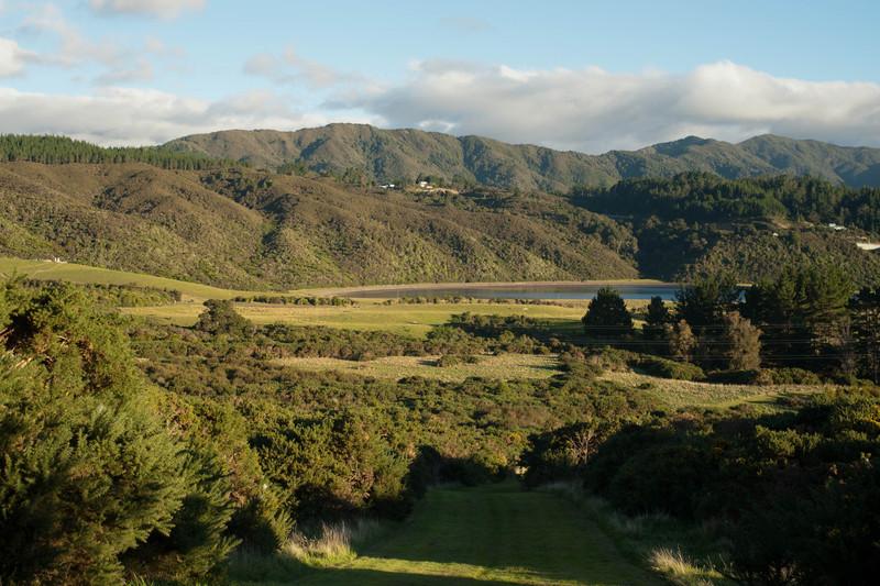 Wellington6369.jpg