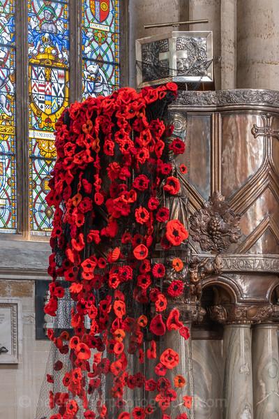 Cathedral & Ripon poppies-1.jpg