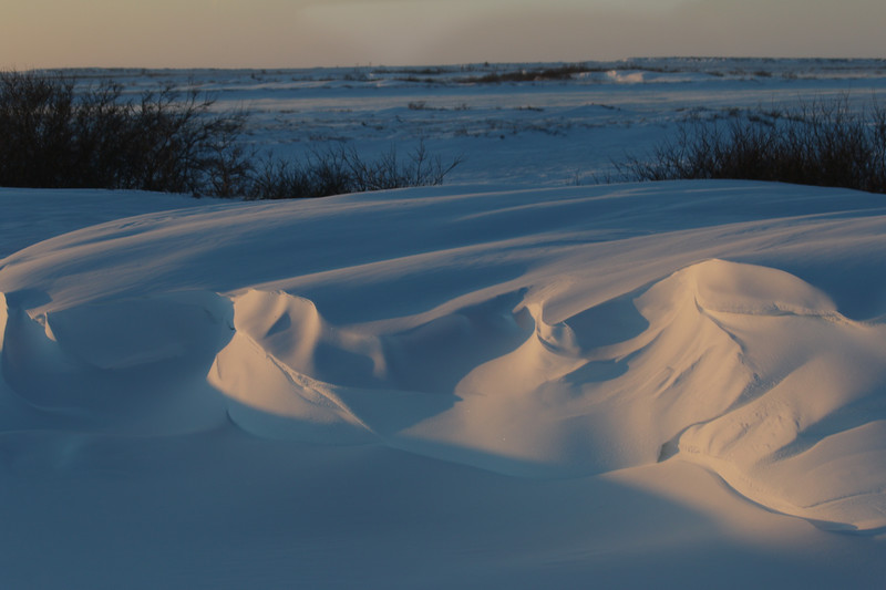 Wind sculpted snow drifts