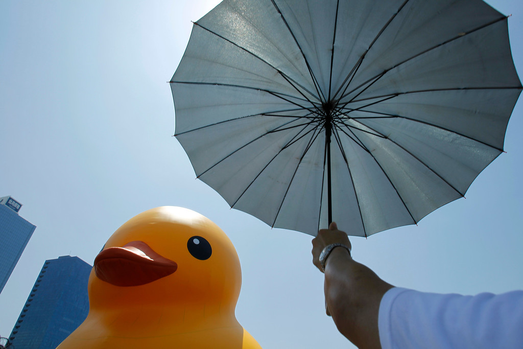. A visitor uses an umbrella to block the heat of the sun as he views a giant yellow duck in the port of Kaohsiung, Taiwan, Thursday, Sept. 19, 2013.  (AP Photo/Wally Santana)