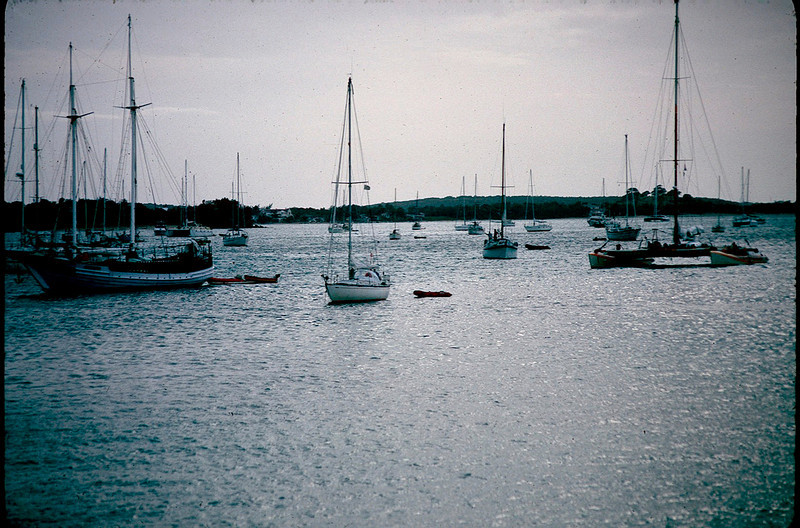 Anguilla_001.jpg