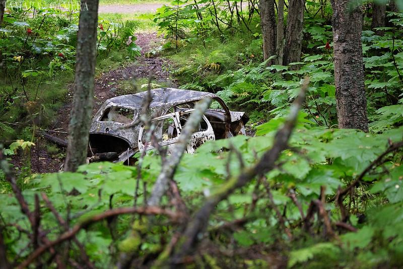 Kincaid Park Car-3-2.jpg