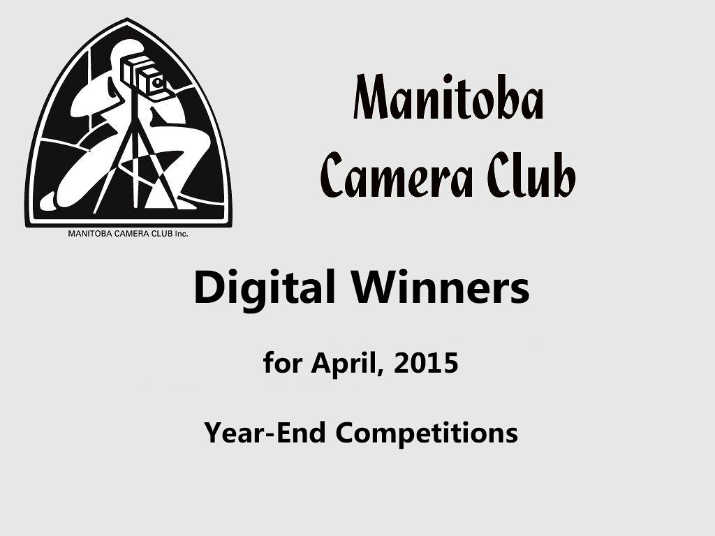 Digital Winners