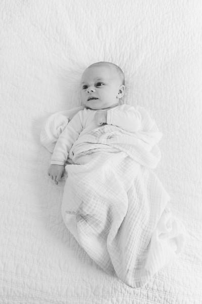 Baby Roman, Shoreline