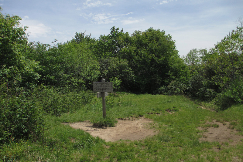Graveyard Ridge Trail (5,450')