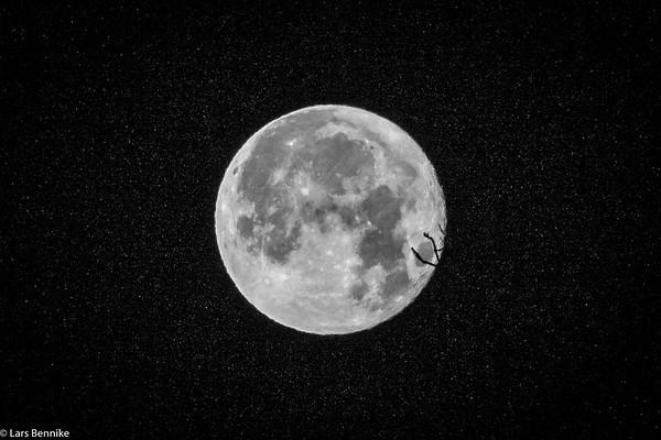 2017 Decembers måne