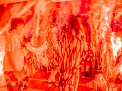 Baile do Sarongue- Metamorfose