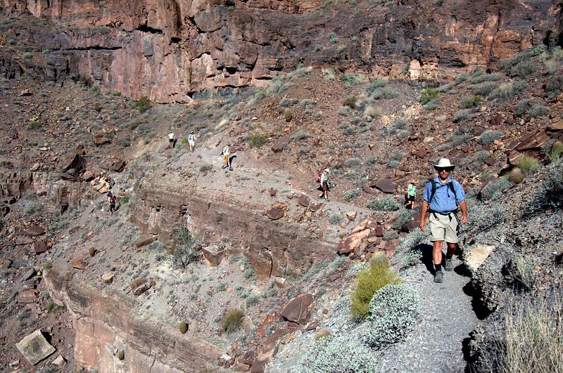 Colorado River Grand Canyon Lees Ferry Diamond Creek