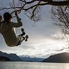 Carefree Swing