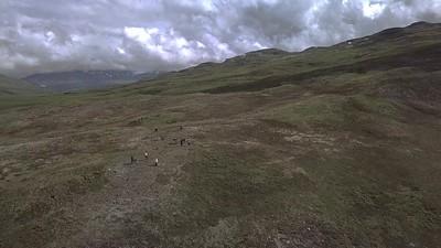 Samuel Glacier Hike