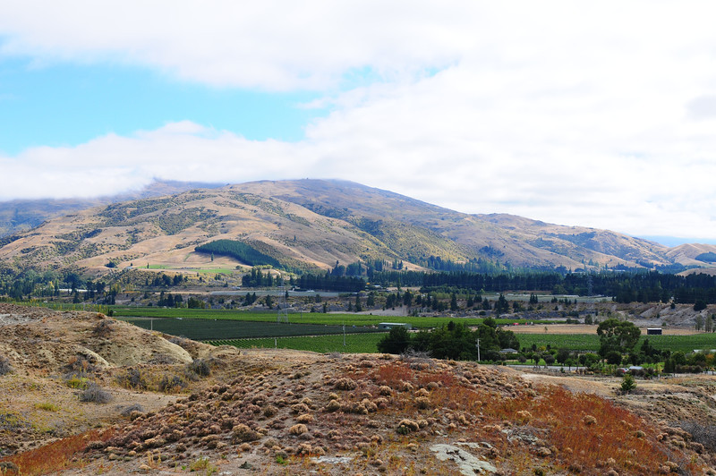 2014_Wanaka_Goldfields      0004.JPG
