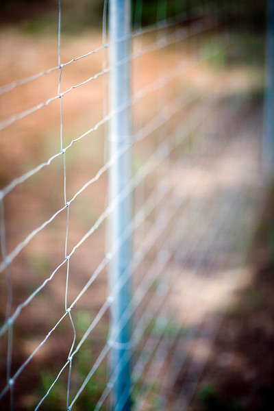 Wire fence in the countryside, Seville, Spain
