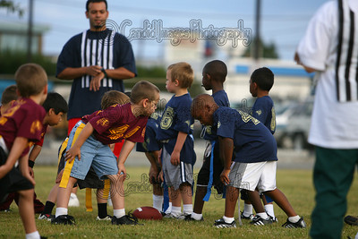American Youth Football and Cheerleading of Fairbaks Alaska