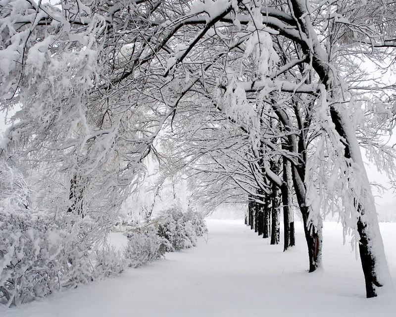 snowing-30d-070405-6867-1280X1024.jpg