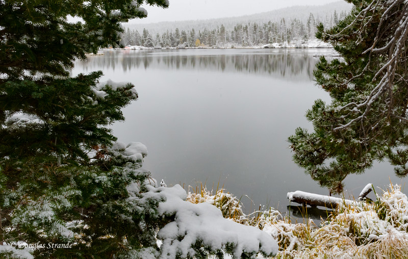 Sprague Lake after Snow