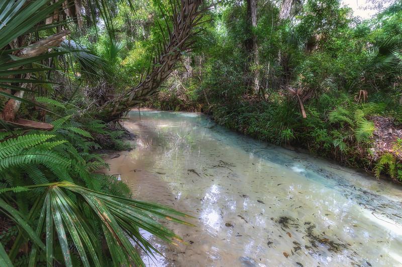 Juniper Creek