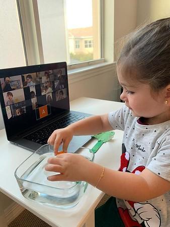 Hillel at Home : Scheck Hillel Online Instruction