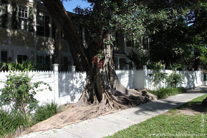 Harry S. Truman Little White House - Key West