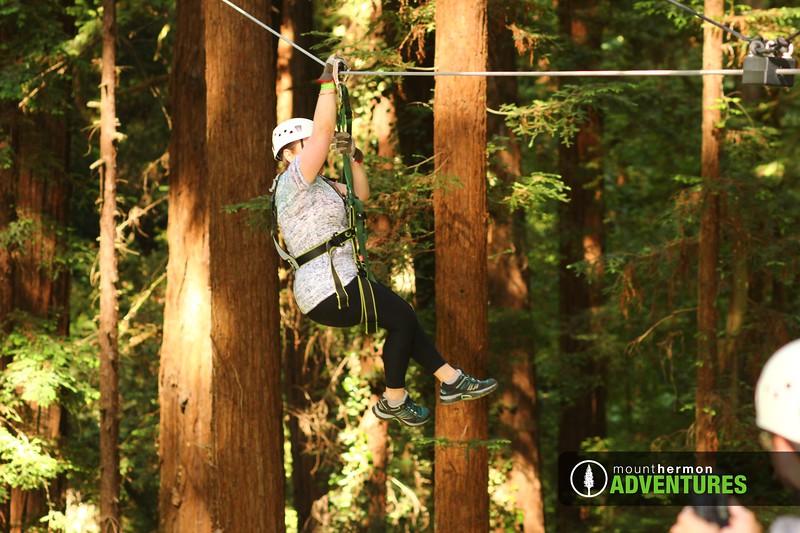 redwood_zip_1528412643440.jpg