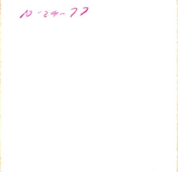 2019-01-27-19-44-0027.jpg