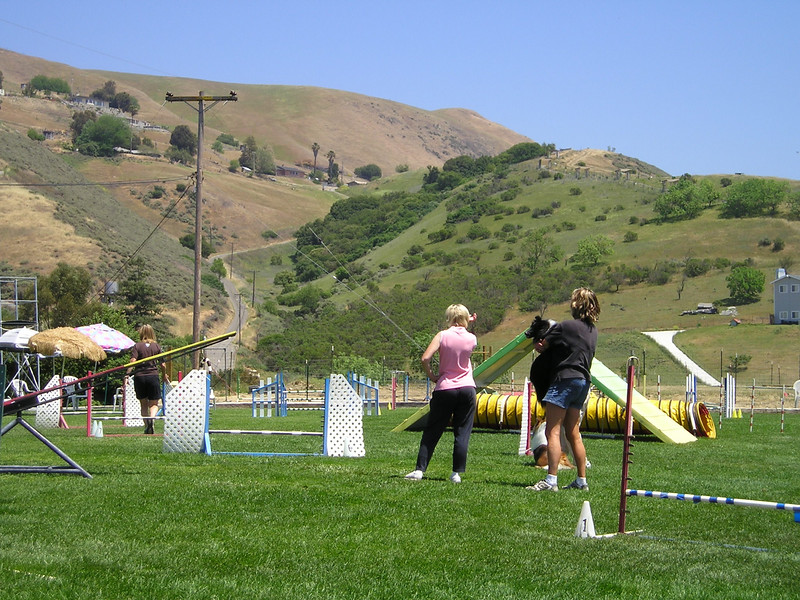 The hills above the agility field.