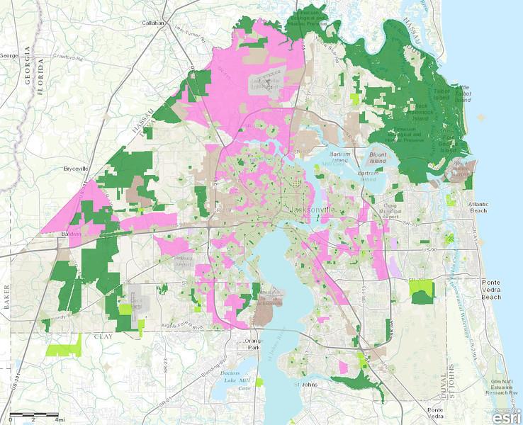 Jacksonville Childhood Obesity Map.jpg
