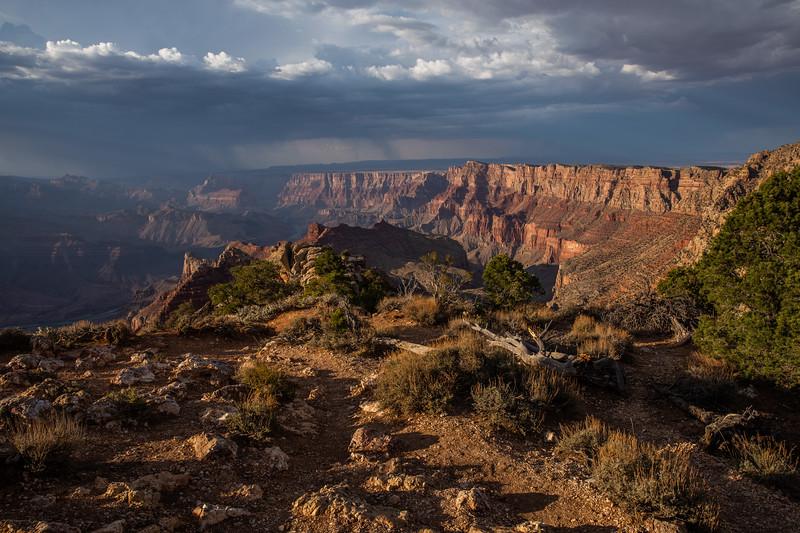 WVWS_Grand Canyon -5189.jpg