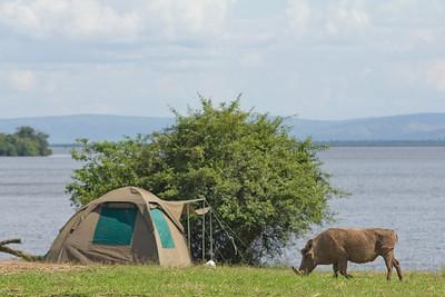 Lake Mburo (UG)