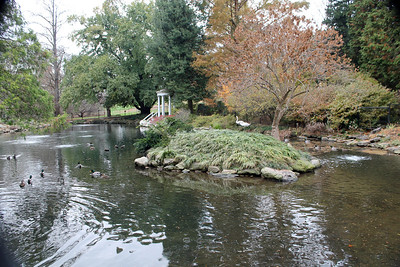 Morris Arboretum Fall Photo Shoot