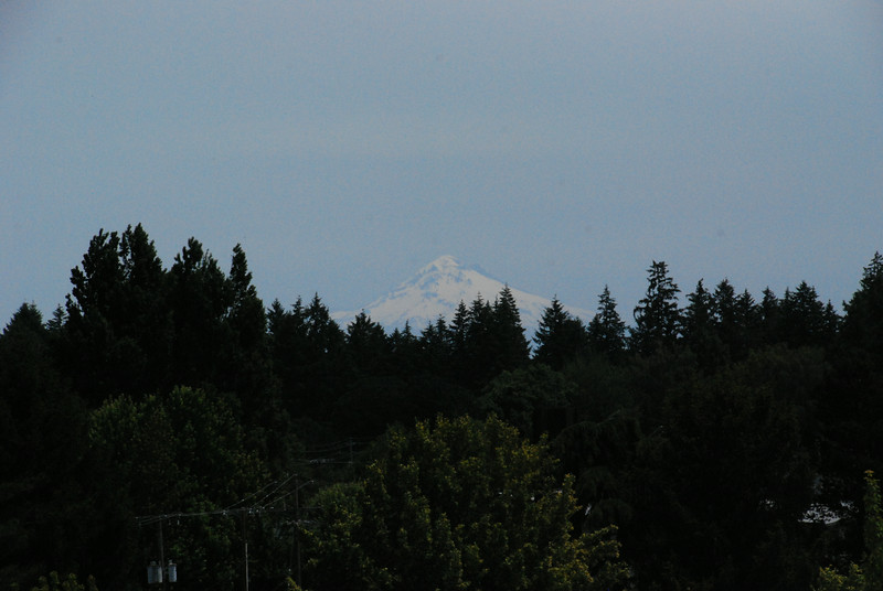 View of Mount Hood from the roof of the Hotel Oregon restaurant, McMinnville.