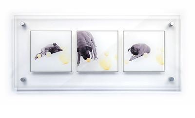 Acrylic-Photo-3