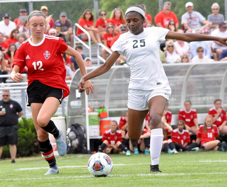 Novi High School defeated Grand Blanc, 1-0, in the Division 1 girls soccer championship game on Friday, June 15, 2018 in Williamston. (Photo gallery by Dan Fenner/The Oakland Press)